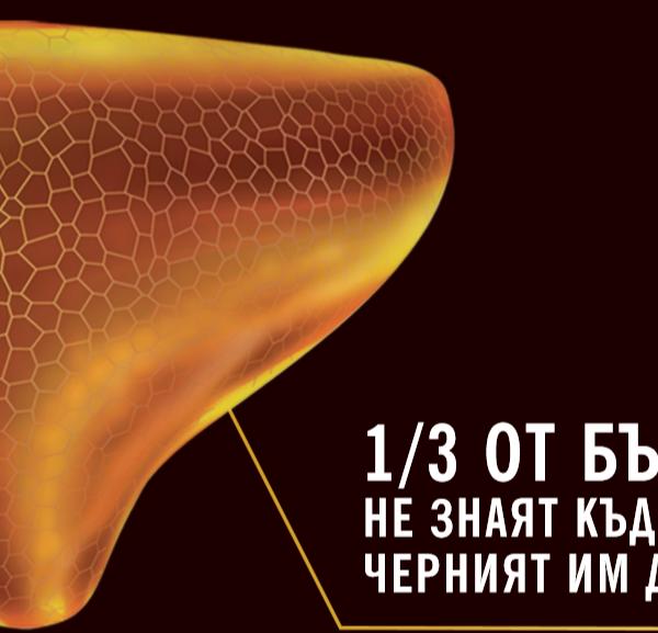 Всеки трети българин не знае къде се намира черният дроб